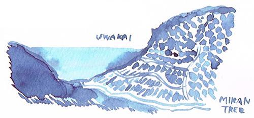 uwakai